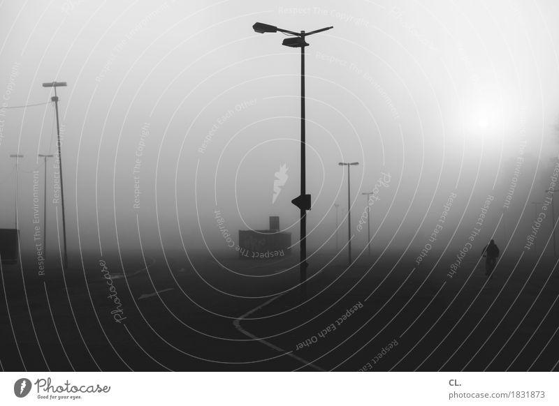 stille straßen Mensch 1 Sonne Herbst Wetter Nebel Verkehr Verkehrswege Fahrradfahren Wege & Pfade dunkel kalt Einsamkeit Straßenbeleuchtung Parkplatz