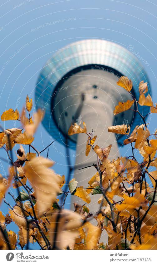 Herbstaussichten III Himmel Natur blau Baum Pflanze Blatt gelb Herbst Landschaft grau Deutschland gold groß Tourismus Turm Macht
