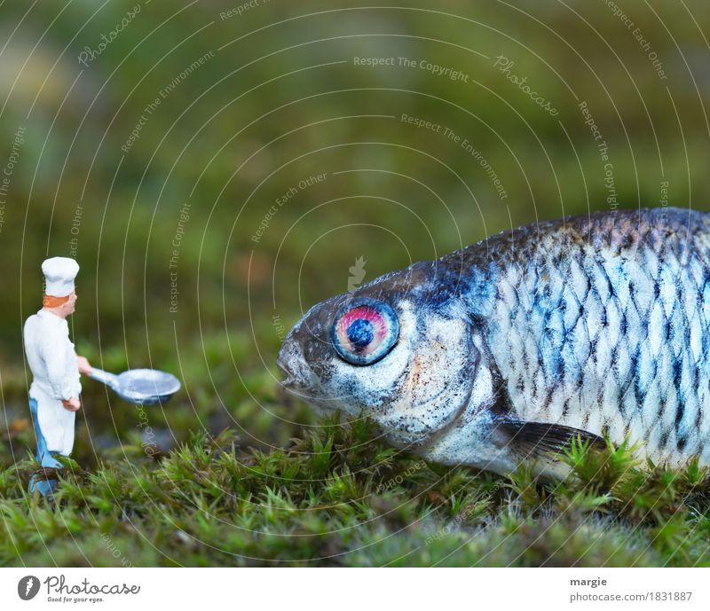 Miniwelten - Ab, in die Pfanne! II Lebensmittel Fisch Ernährung Mittagessen Festessen Bioprodukte Beruf Koch Küche Mensch maskulin Mann Erwachsene 1 Tier
