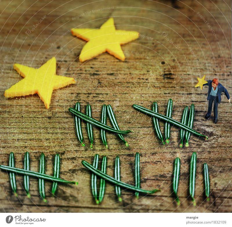 Miniwelten - Die Tage bis Weihnachten zählen! Feste & Feiern Weihnachten & Advent Mensch maskulin Mann Erwachsene 1 Pflanze Baum Blatt gelb grün Stern (Symbol)