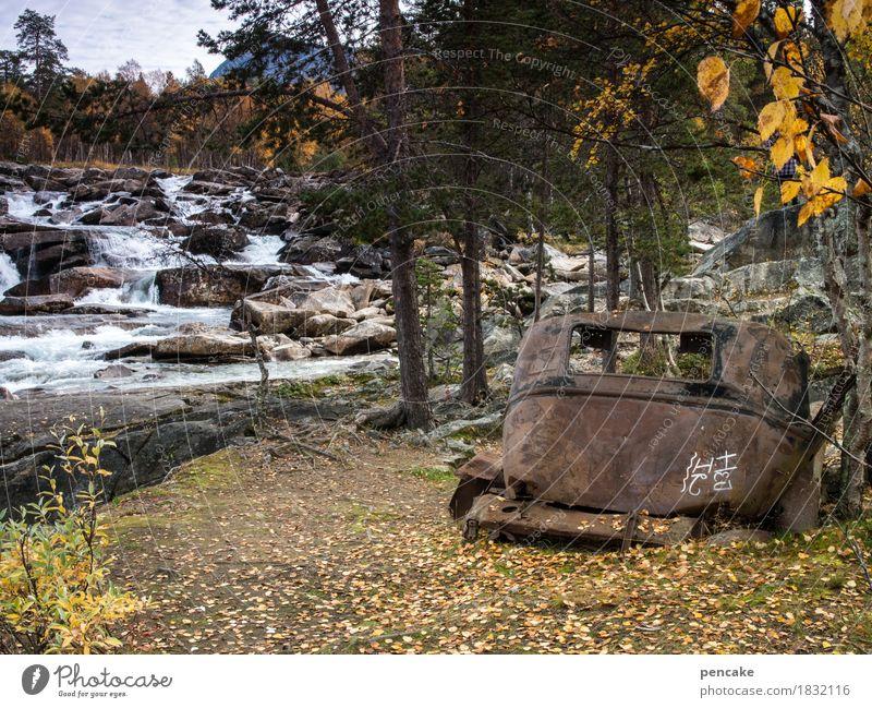vom rasten und rosten Natur nackt Wasser Landschaft Wald Graffiti Herbst Tod Kunst PKW Idylle retro Zeichen historisch Fluss Urelemente