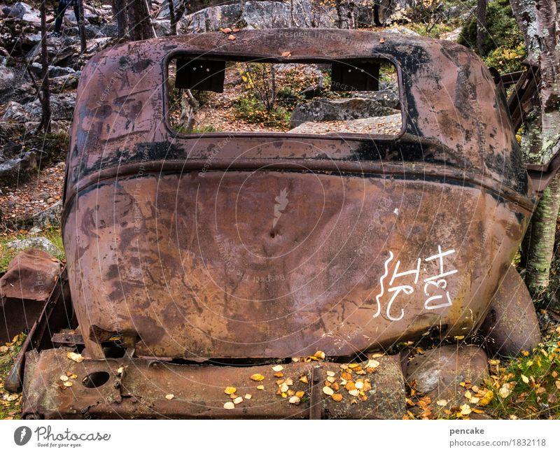R.I.P. Natur Wald Graffiti Herbst Tod PKW Schriftzeichen ästhetisch authentisch Vergänglichkeit kaputt historisch Vergangenheit Rost Reichtum trashig