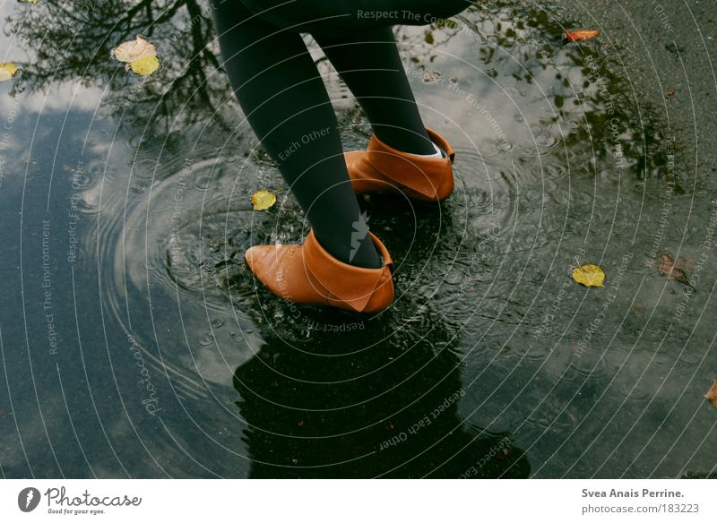 es ist der traum der uns gefällt Mensch Jugendliche Wasser Baum Freude Blatt feminin Gefühle Schuhe springen Glück Beine Fuß Regen braun nass