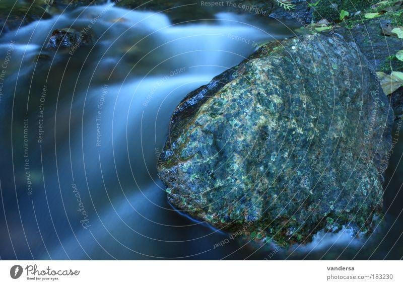 Wasser - Urkraft der Natur Farbfoto Außenaufnahme Detailaufnahme Menschenleer Morgen Kontrast Reflexion & Spiegelung Bewegungsunschärfe Blick nach vorn