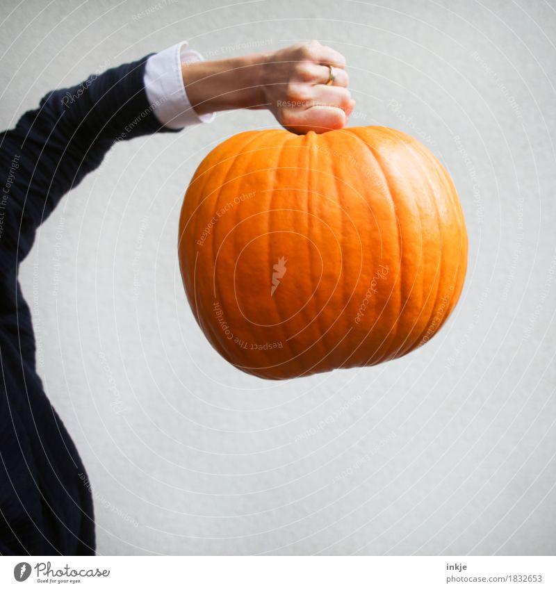Großkaliber Kürbis Kürbiszeit Ernährung Freizeit & Hobby Erntedankfest Halloween Frau Erwachsene Leben Arme Hand 1 Mensch Herbst festhalten tragen stark Kraft
