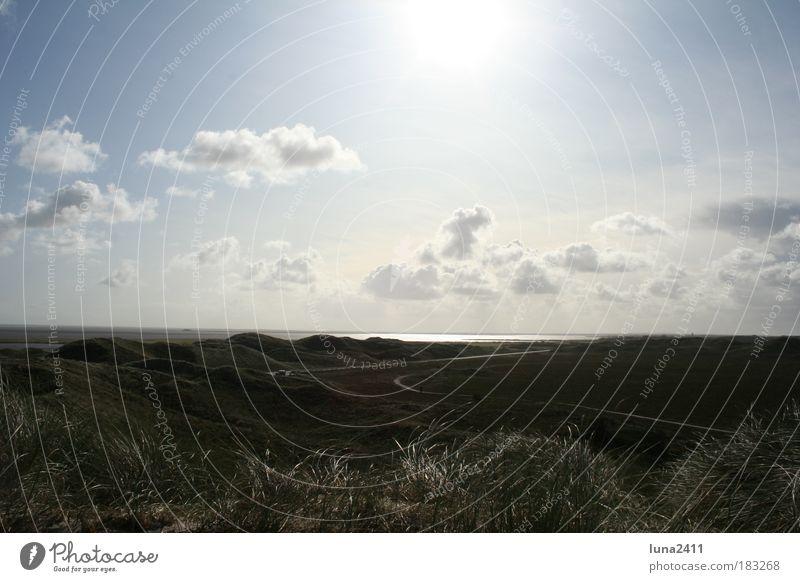 Dünenlandschaft Farbfoto Außenaufnahme Menschenleer Morgen Sonnenstrahlen Gegenlicht Totale Natur Erde Himmel Wolken Sonnenlicht Schönes Wetter Gras Hügel Küste