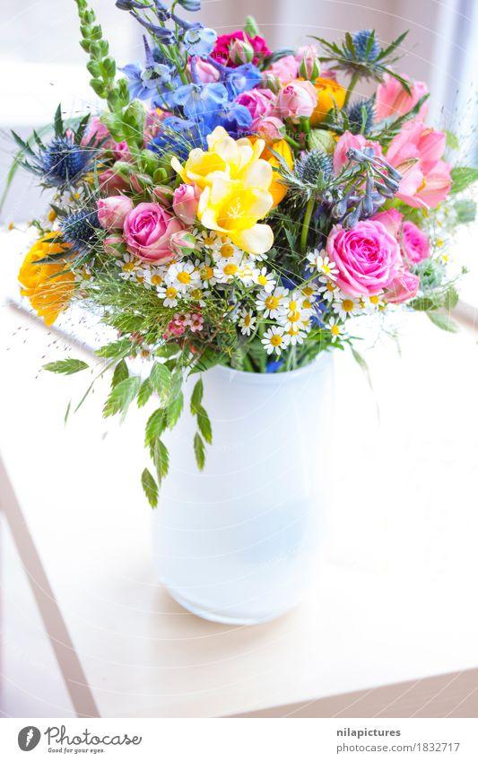 Strauss mit Wildblumen in weisser Vase Natur Pflanze schön Erholung Blatt ruhig Freude gelb Blüte Liebe Lifestyle Gras Glück Garten Design hell