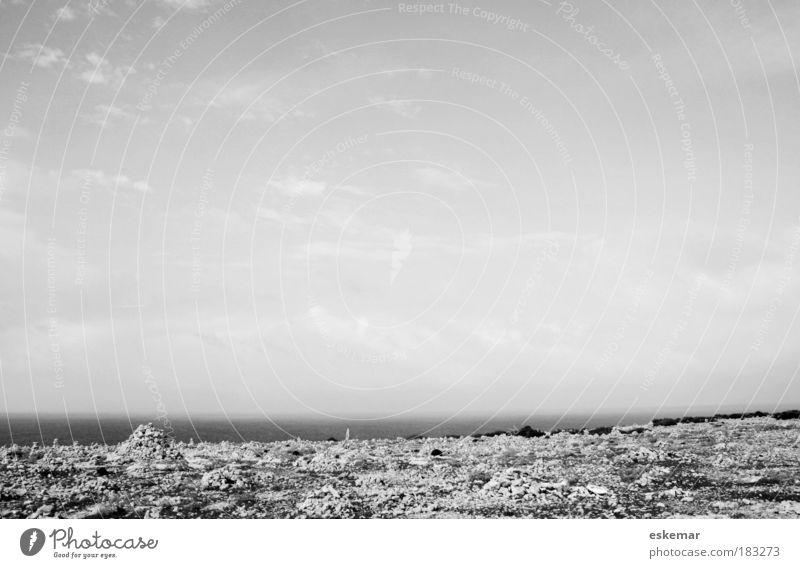 lonesome Schwarzweißfoto Außenaufnahme Menschenleer Textfreiraum oben Textfreiraum Mitte Hintergrund neutral Tag Sonnenlicht Weitwinkel Natur Landschaft