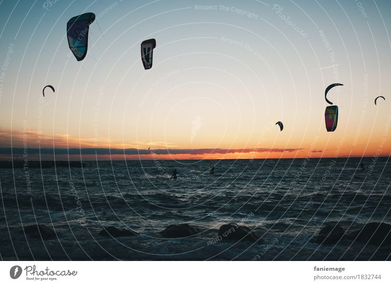 Marseille surfers Lifestyle Ferien & Urlaub & Reisen Tourismus Abenteuer Freiheit Sommer Strand Meer Wellen sportlich Geschwindigkeit Freude Surfer Surfen