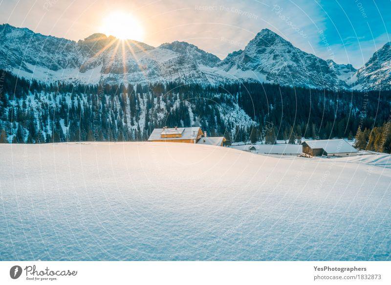 Alpiner Winter an einem sonnigen Tag Natur Ferien & Urlaub & Reisen blau weiß Sonne Baum Landschaft Haus Wald Berge u. Gebirge Schnee Design Tourismus träumen