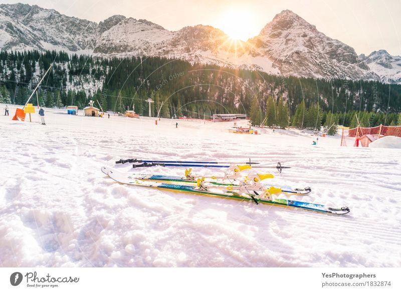 Natur Ferien & Urlaub & Reisen blau Weihnachten & Advent weiß Sonne Baum Landschaft Freude Winter Wald Berge u. Gebirge Leben Sport Schnee Freiheit