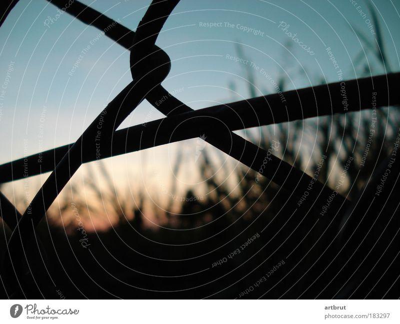 Tempelhof hinter Gittern Farbfoto Außenaufnahme Nahaufnahme Menschenleer Abend Dämmerung Kontrast Silhouette Schwache Tiefenschärfe Froschperspektive