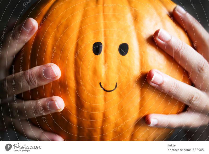 Kürbiskopf Kürbiszeit Ernährung Lifestyle Freizeit & Hobby Erntedankfest Halloween Kindheit Jugendliche Leben Hand Finger 1 Mensch 8-13 Jahre 13-18 Jahre