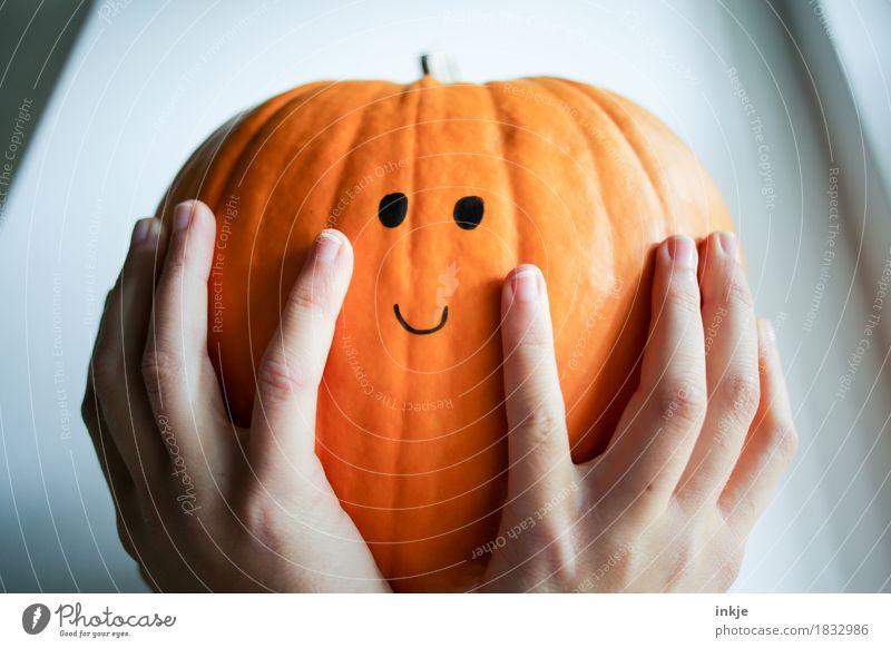 Kürbi, zufrieden mit sich und der Welt Kürbis Lifestyle Freude Freizeit & Hobby Erntedankfest Halloween Kindheit Jugendliche Leben Hand Frauenhand 1 Mensch