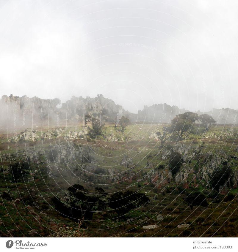nebula Natur Einsamkeit ruhig Ferne Erholung Landschaft Gefühle Stein Stimmung Felsen Nebel elegant ästhetisch einzigartig Urelemente Hügel