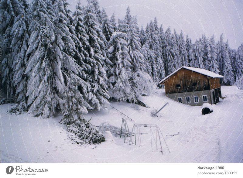 Wintertraum schön Winter Haus Wald kalt Schnee Landschaft Stimmung ästhetisch Dorf