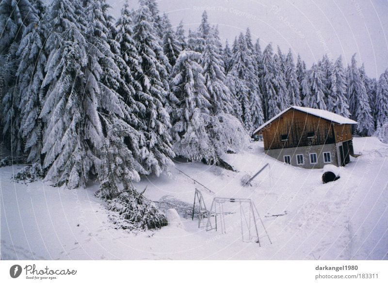 Wintertraum schön Haus Wald kalt Schnee Landschaft Stimmung ästhetisch Dorf