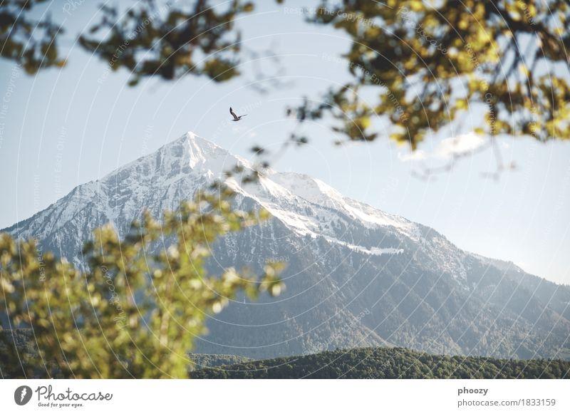 Niesen Landschaft Himmel Berge u. Gebirge Horizont Natur Umwelt Farbfoto Gedeckte Farben Abend