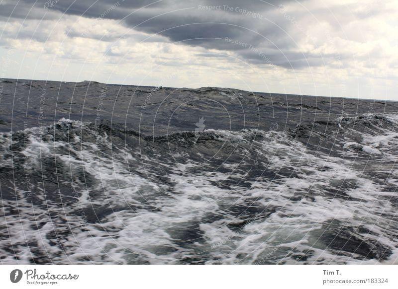 Le Mar Himmel Natur Wasser Ferien & Urlaub & Reisen Meer Wolken Ferne Freiheit Wellen Horizont Ostsee Rettung Gewitterwolken Kreuzfahrt