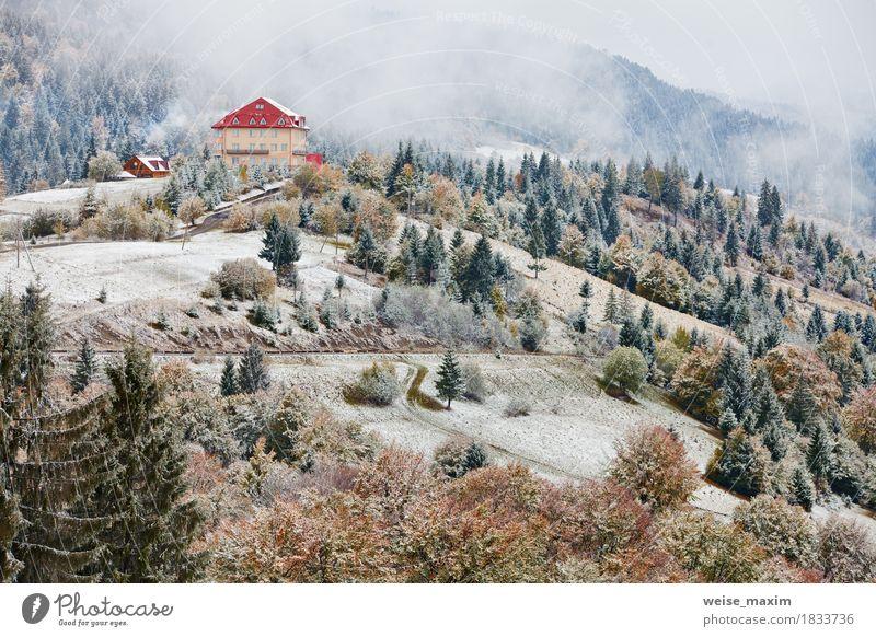 Erster Schnee im Herbst. Schneefälle in Bergen. Schnee und Nebel Natur Ferien & Urlaub & Reisen grün weiß Baum Landschaft Haus Ferne Winter Wald