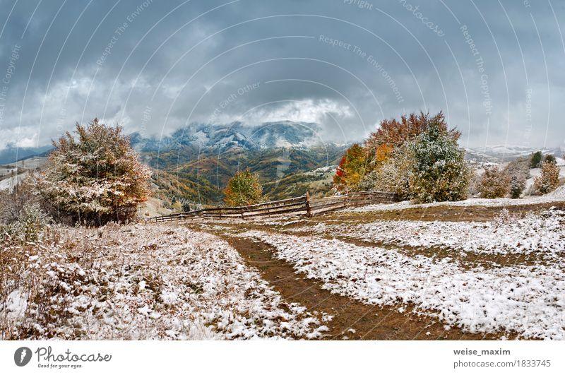 Erster Schnee im Herbst. Schneefall im Bergdorf Himmel Natur Ferien & Urlaub & Reisen grün weiß Baum Landschaft rot Wolken Ferne Winter Wald Berge u. Gebirge