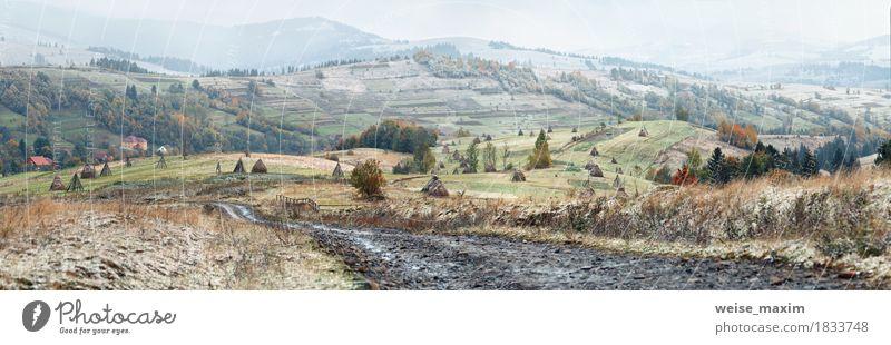 Erster Schnee im Herbst. Schneefall im Bergdorf Himmel Natur Ferien & Urlaub & Reisen grün Landschaft Wolken Haus Ferne Winter Wald Berge u. Gebirge Straße