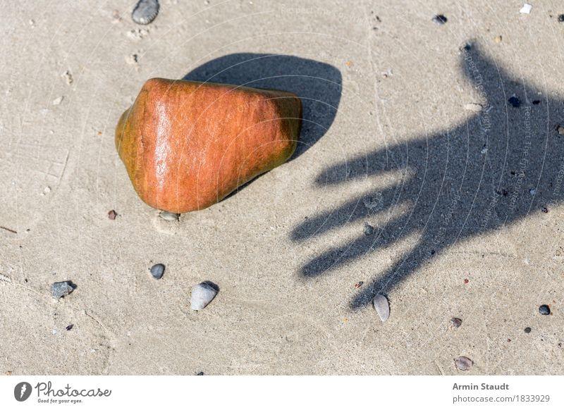 Handschattenstein Leben Ferien & Urlaub & Reisen Sommer Sommerurlaub Strand Finger Natur Sand Schönes Wetter Stein berühren einfach nass orange Vorfreude