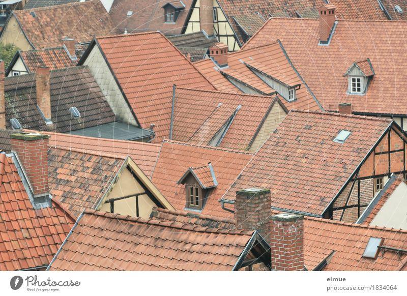 Dachlandschaft (4) Altstadt Haus Fenster Schornstein Ziegeldach Dachfirst Fachwerkhaus Dachfenster Dachgiebel alt authentisch historisch Stadt rot Geborgenheit