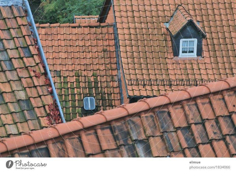Dachlandschaft (1) alt rot Haus außergewöhnlich Business Zusammensein Design Häusliches Leben träumen Zufriedenheit authentisch Romantik historisch Sicherheit