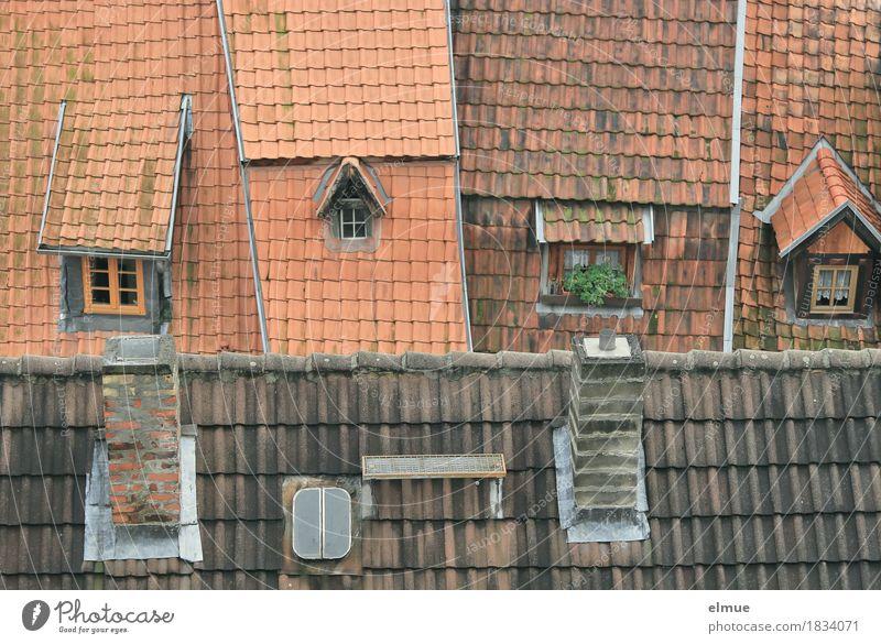 Dachlandschaft (2) Stadt rot Haus Fenster Design Häusliches Leben Zufriedenheit einzigartig Romantik niedlich historisch Schutz Neigung Netzwerk Höhenangst