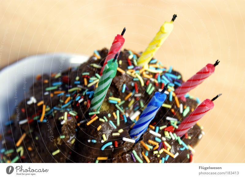 The Day after Birthday Ernährung Kraft Feste & Feiern Lebensmittel Fröhlichkeit Kerze einzigartig Übergewicht berühren Geschirr Kuchen dick blasen Süßwaren