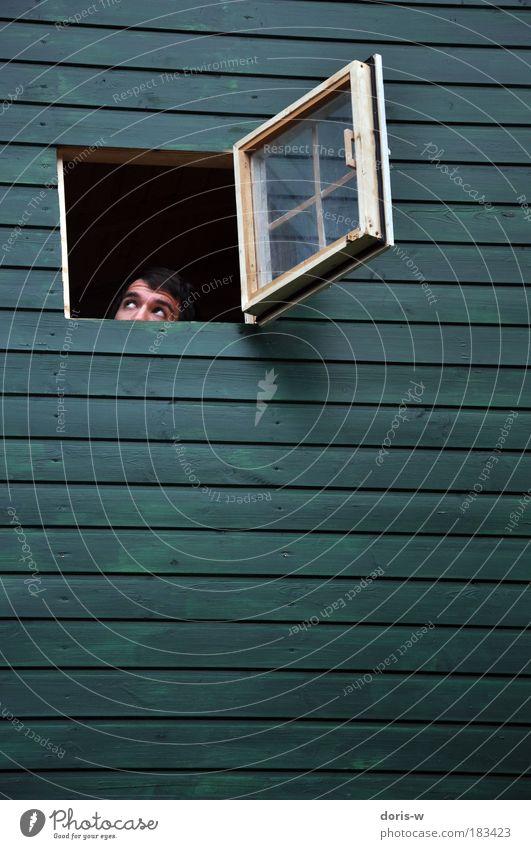 versteckt Blick nach oben maskulin Junger Mann Jugendliche Erwachsene Kopf beobachten frech verstecken Fenster Haus Wand grün Streifen waagrecht offen