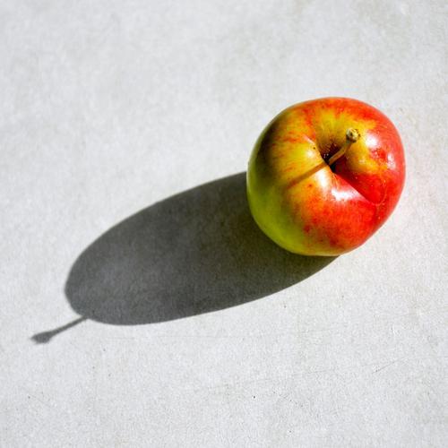 Vom Baum auf den Tisch Frucht Apfel Ernährung Bioprodukte Herbst frisch Gesundheit lecker rot Farbe genießen Natur Farbfoto Außenaufnahme Muster