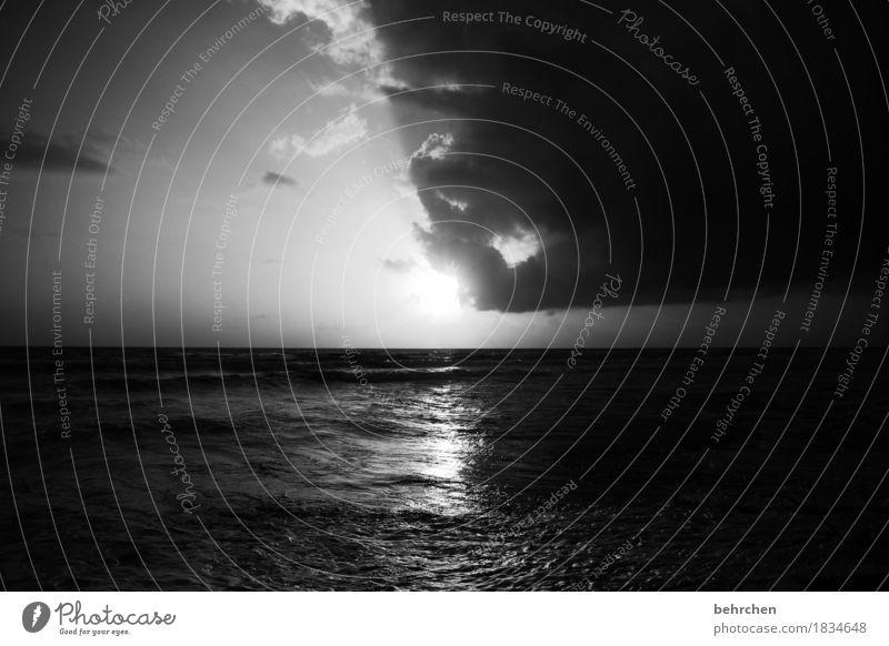 monoton | monochrom Himmel Natur Ferien & Urlaub & Reisen Sommer schön Sonne Meer Landschaft Erholung Wolken Ferne Strand Küste außergewöhnlich Freiheit