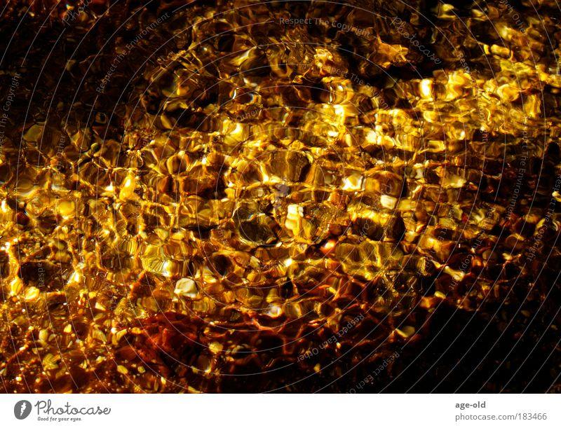 Goldrausch Natur Wasser Sommer ruhig Erholung Umwelt Stein träumen gold glänzend Zufriedenheit nass leuchten ästhetisch Urelemente Schönes Wetter