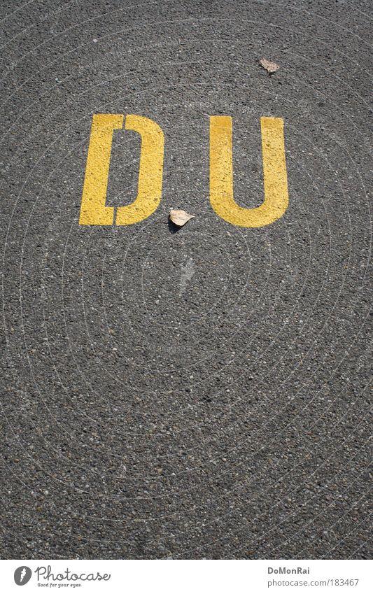 Wer? Ich? Farbe Blatt gelb Straße Graffiti Wege & Pfade grau Kunst Freundschaft Schilder & Markierungen Schriftzeichen Kultur schreiben Asphalt Straßenbelag Sympathie