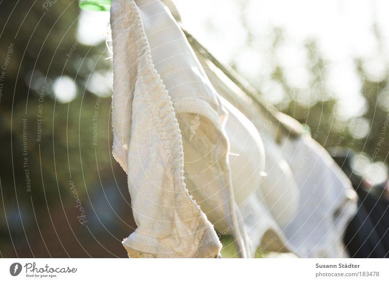 Oma`s Secret II Stoff hängen BH weiß Wäsche trocknen Wäscheleine BH-Träger Unterwäsche mehrfarbig Außenaufnahme Nahaufnahme Detailaufnahme Wäsche waschen