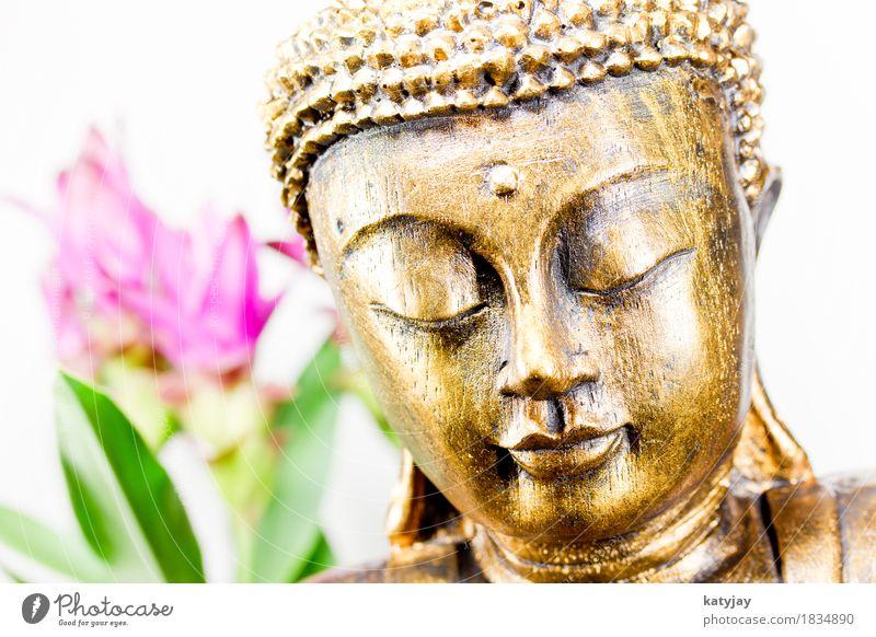 Buddha Erholung ruhig Gesicht Religion & Glaube Kunst Kopf Kultur Kraft Wellness Frieden Verstand Asien Wohlgefühl harmonisch Mitte