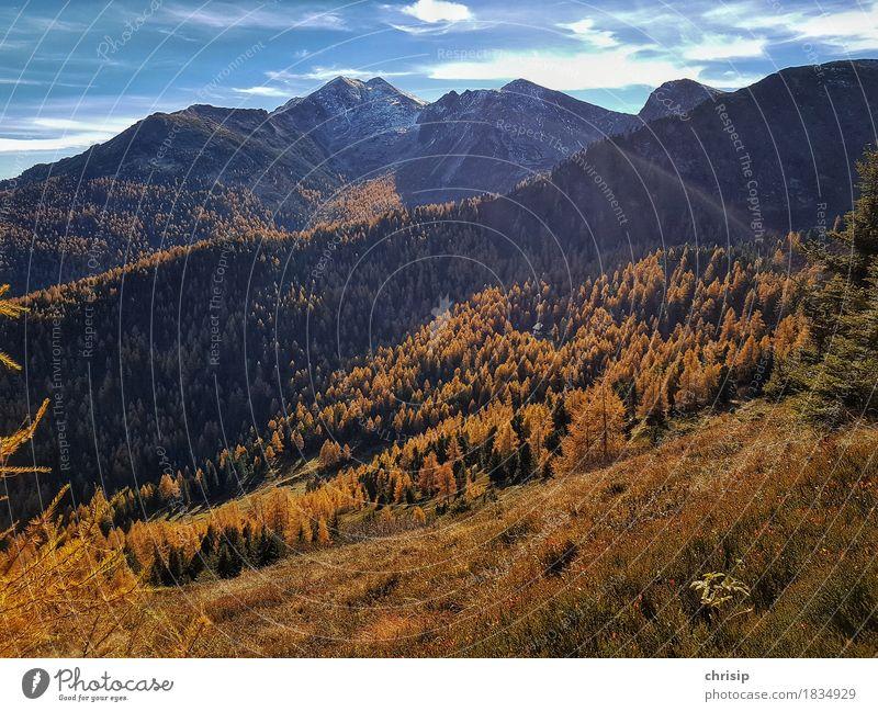 Herbst am Berg Himmel Natur Ferien & Urlaub & Reisen blau schön Baum Landschaft Erholung Wolken Ferne Wald Umwelt Wärme Gras Schnee