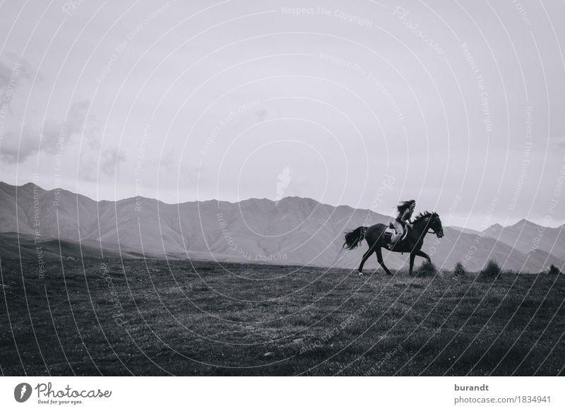 Für alle Pferdeliebhaber! Himmel Natur Ferien & Urlaub & Reisen Jugendliche Sommer Junge Frau Landschaft Ferne 18-30 Jahre Berge u. Gebirge Erwachsene Leben