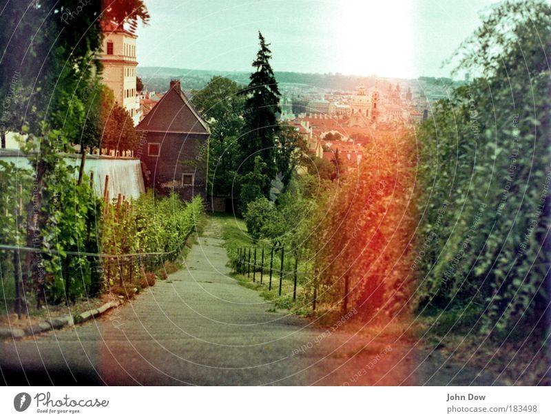 Praha Stadt Baum Pflanze Blume Haus Wand Gras Wege & Pfade Mauer Sträucher Spaziergang Neugier Bauwerk Unendlichkeit Ferien & Urlaub & Reisen Gefühle