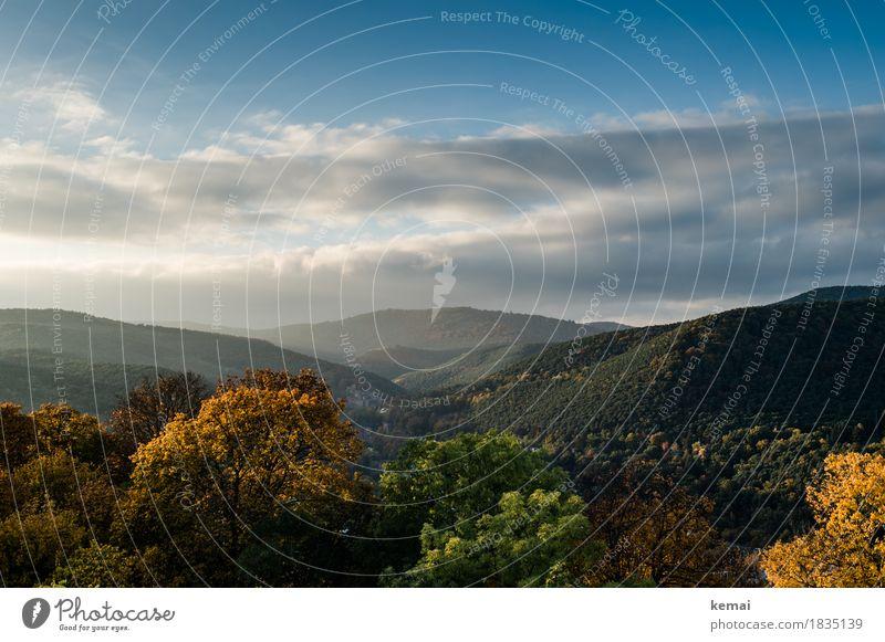 Herbstliche Pfalz Himmel Natur Pflanze schön Baum Landschaft Erholung Wolken ruhig Ferne Wald Wärme Herbst Freiheit Stimmung Ausflug