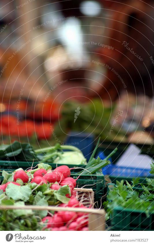 Marktgeschrei Ernährung Leben Gesundheit Lebensmittel Gemüse Handel verkaufen Bioprodukte Qualität Vegetarische Ernährung Marktstand Wochenmarkt