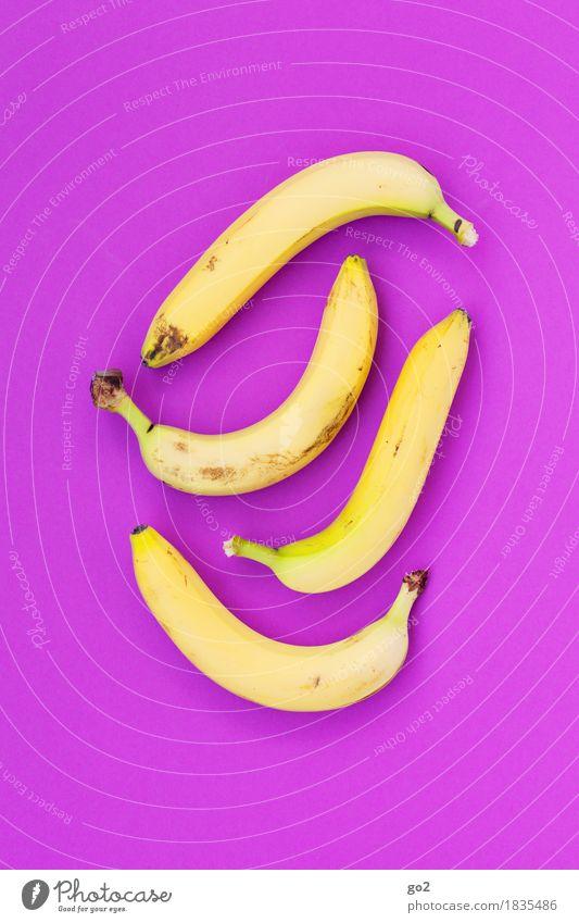 Bananen Gesunde Ernährung gelb Essen Gesundheit Kunst außergewöhnlich Lebensmittel Design Frucht Ernährung frisch ästhetisch Fröhlichkeit violett lecker Bioprodukte