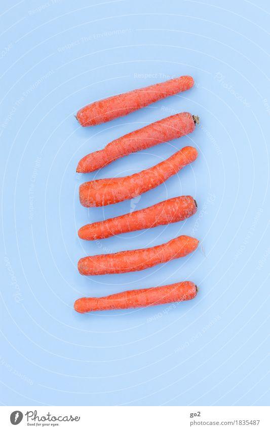 Möhren Lebensmittel Ernährung Essen Bioprodukte Vegetarische Ernährung Diät Fasten Gesunde Ernährung Gesundheit lecker blau orange Farbfoto Innenaufnahme