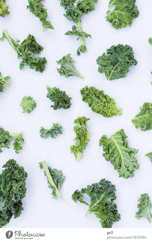 Grünkohl Lebensmittel Gemüse Grünkohlblatt Ernährung Essen Bioprodukte Vegetarische Ernährung Diät Fasten Gesunde Ernährung Koch frisch Gesundheit grün weiß