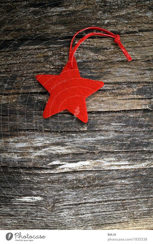Stern Weihnachten & Advent rot Winter Holz Feste & Feiern Dekoration & Verzierung Zeichen Tradition Weihnachtsbaum Basteln ländlich rustikal