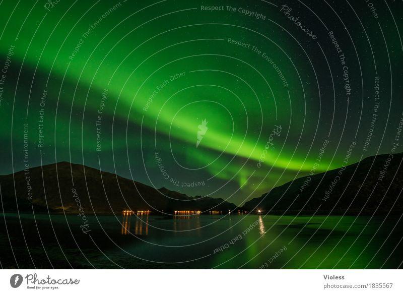 northern lights III Himmel Natur Wolken Herbst Bewegung außergewöhnlich Horizont geheimnisvoll Unendlichkeit Surrealismus Nachthimmel Norwegen Fjord demütig