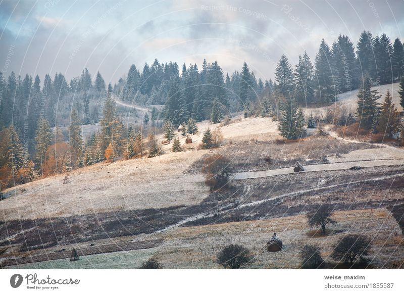Erster Schnee auf den Bergen Hügeln Himmel Natur Ferien & Urlaub & Reisen Pflanze blau weiß Baum Landschaft Wolken Ferne Winter Wald Berge u. Gebirge Umwelt
