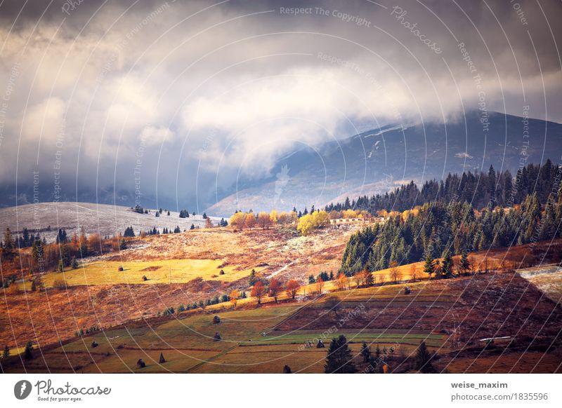 November nebligen Morgen in Bergen Natur Ferien & Urlaub & Reisen Baum Landschaft rot Wolken Ferne Berge u. Gebirge Umwelt gelb Wege & Pfade Wiese Herbst Schnee